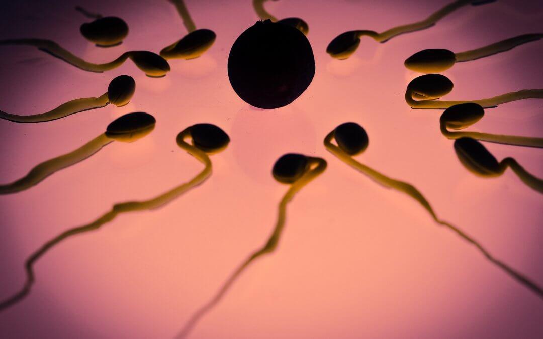 Laboratórny test kvality spermií