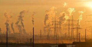 Znečistené ovzdušie prispieva k narušeniu DNA v spermiách / Neplodnost.sk